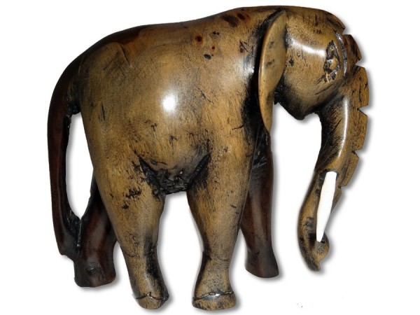 Elefant aus Ebenholz 12x12cm