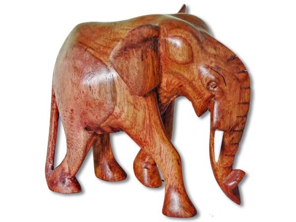 Elefant laufend Rüssel unten Afrika 13,5